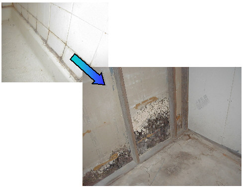 Bathroom Tiles Leaking mold on bathroom walls. how to get rid of mold and mildew on